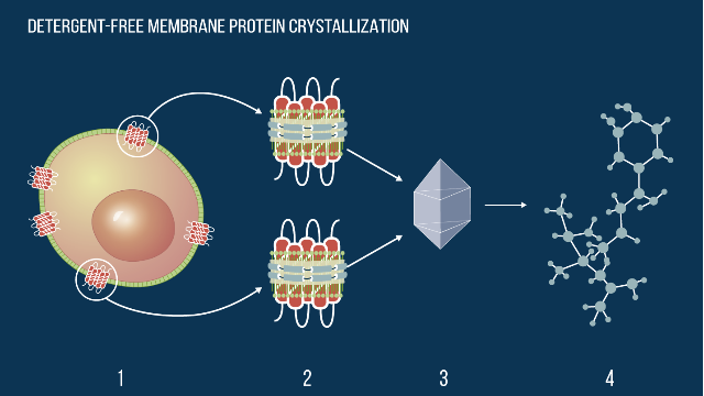 New Approach for Membrane Protein Crystallization