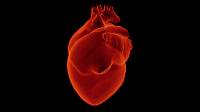 New Blood Test Rapidly Diagnoses Heart Attacks