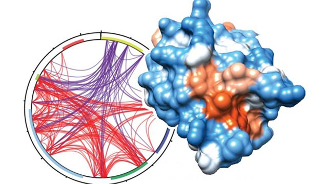 New Insight Suggests UHRF1 Protein Could be Potential Drug Target