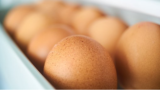 New Method for the Detection of Fipronil Insecticide and its Associated Metabolites in Eggs and Poultry Launched by SCIEX