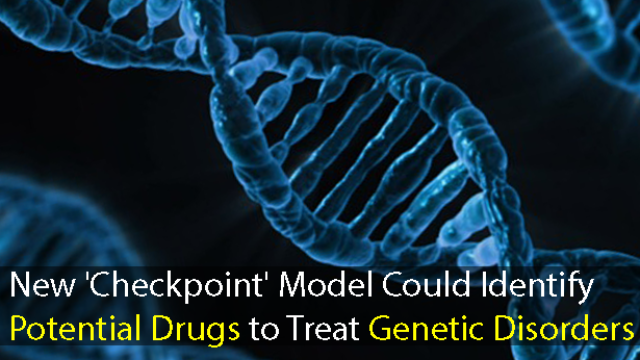New Model Identifies Drug Development Targets for Genetic Disorders