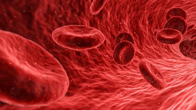 Correcting Tissue Hypoxia with Ozonized Erythrocytes