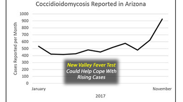 New Rapid Test for Valley Fever Should Help Reduce Diagnosis Delays