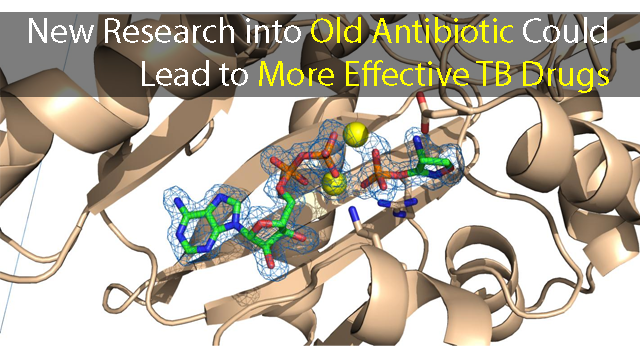 New Research into an Old Antibiotic Could Lead to More Effective TB Drugs