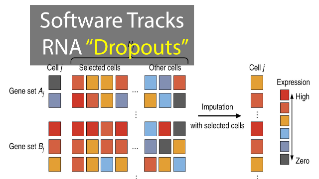 "New Software Tool Tracks RNA ""Dropouts"""