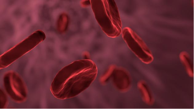 New Therapeutic Strategy for Blood Vessel Related Disorders