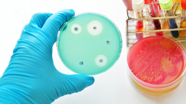 New Tools for Combating Antibiotic Resistance
