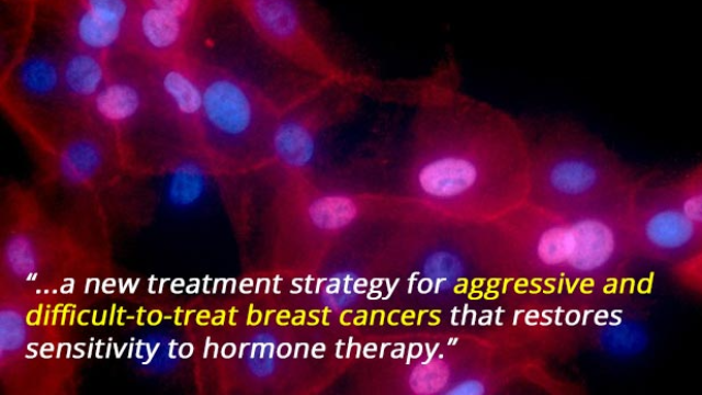 New Way to Treat Aggressive Breast Cancer