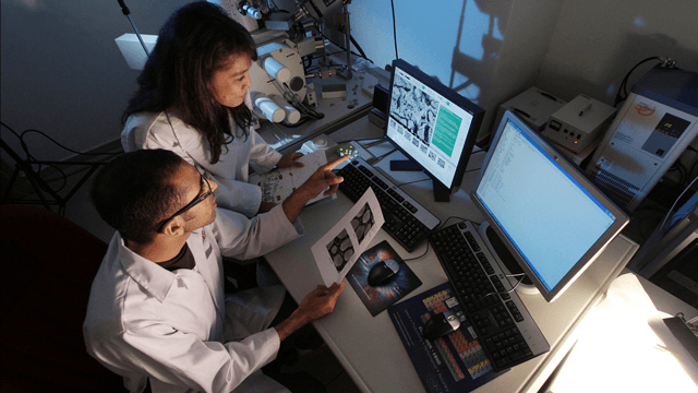 NIH Funds Research to Explore a Cell Communication Process
