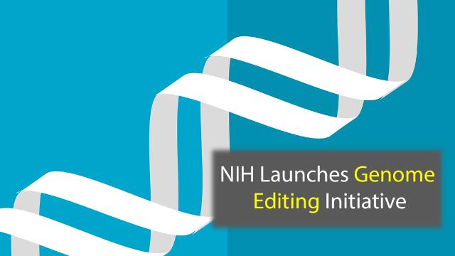 NIH Program Aims to Create Gene Editing Tools