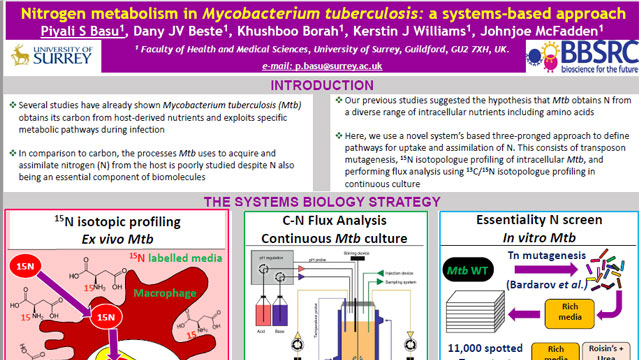 Nitrogen metabolism in Mycobacterium tuberculosis: a systems-based approach
