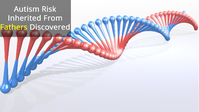Non-Coding DNA Variants Increase Autism Risk