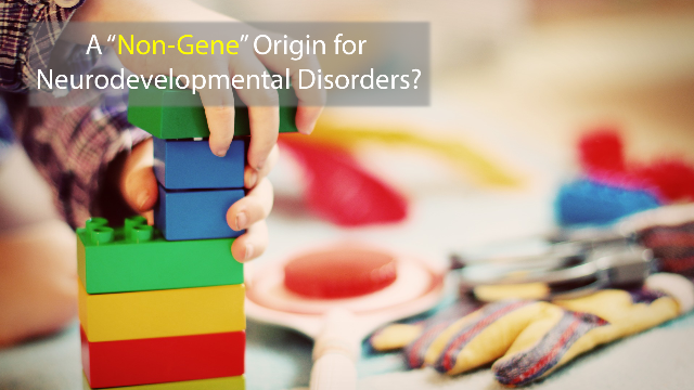 """Non-Gene"" Mutations May Hold Answers to  Neurodevelopmental Disorders"