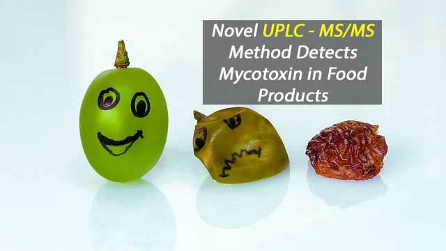 Novel UPLC - MS/MS Method Detects Mycotoxin, Ochratoxin A, in Food Products