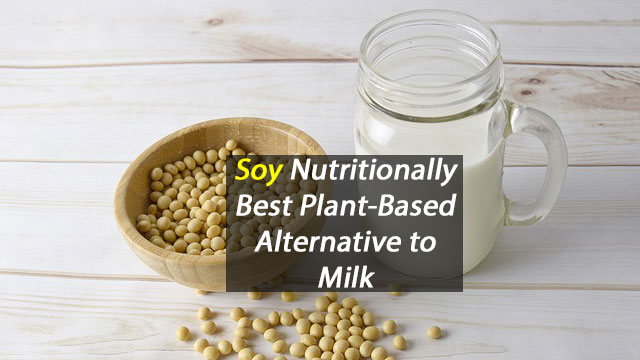 Nutritionally, Soy Milk is Best Plant-Based Milk