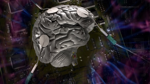 Modulating brain's stress circuitry might prevent Alzheimer's disease