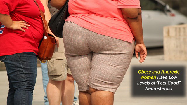 Obese and Anorexic Women Have Low Levels of 'Feel Good' Neurosteroid