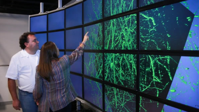 3-D map of the brain: Software developed to augment our understanding of neuronal networks