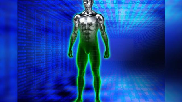 Human behavior simulator