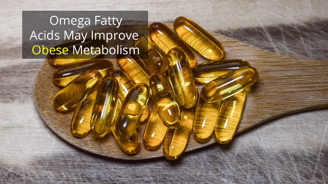 Omega Fatty Acids Alter Gene Expression in Obesity