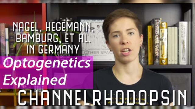 Optogenetics Explained