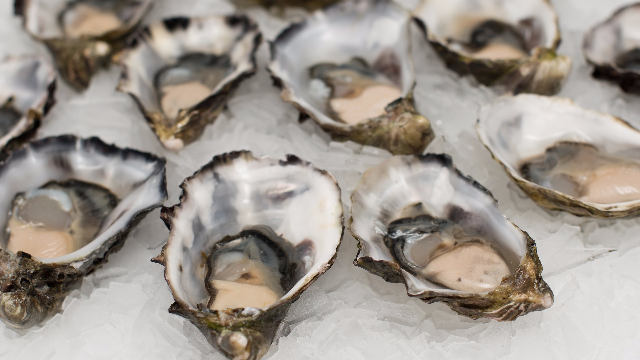 Oyster Gene Tool Set to Boost Yields