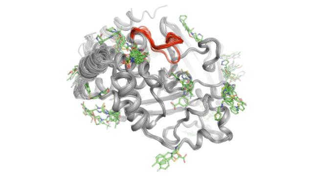Peering Inside Proteins