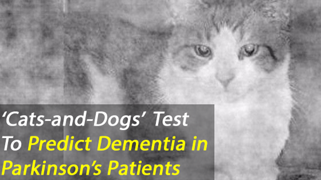 Pictures of Cats and Dogs Used to Predict Outcome of Dementia in Parkinson's Patients