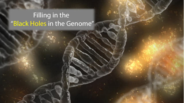 """Filling the """"Black Holes of the Genome"""""""