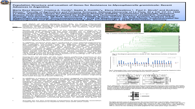 Population structure and location of genes for resistance to Mycosphaerella graminicola: Recent advances in Argentina