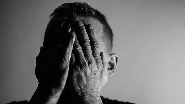 Potential Drug Target for Bipolar Identified