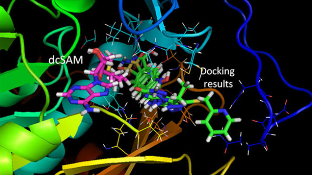 Potential for Anti-Chagas Therapies Using Structure-based Drug Design