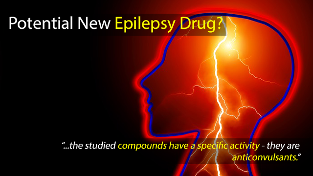 Potential New Epilepsy Drug?