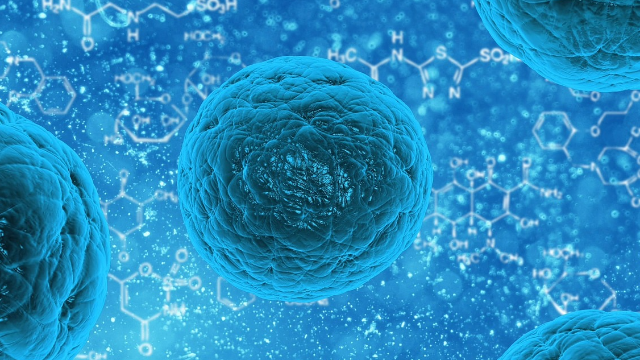 Potential of Adipose-derived Stem Cells in Anti-Aging Treatments