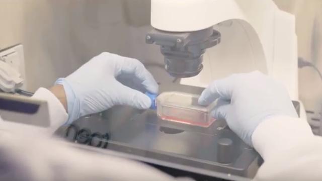 Precision Medicine and Liquid Biopsy: The Future of Diagnosing and Managing Disease