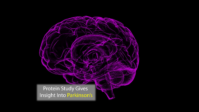 Protein Analysis Gives Insight into Parkinson's