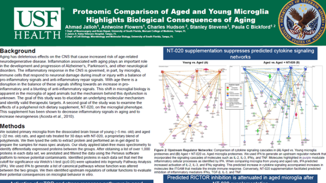 Proteomic Comparison of Aged and Young Microglia Highlights Biological Consequences of Aging