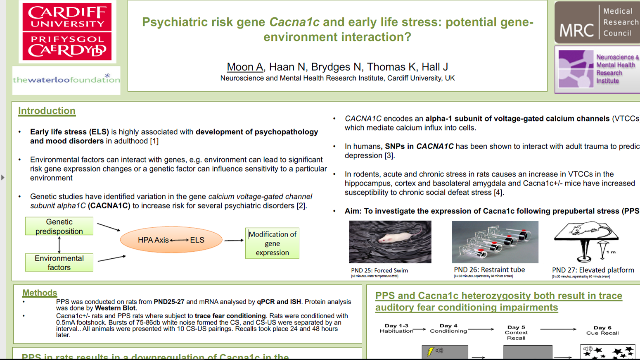 Psychiatric Risk Gene Cacna1c and Early Life Stress: Potential Gene-Environment interactions?
