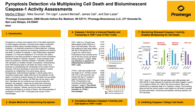 Pyroptosis Detection via Multiplexing Cell Death and Bioluminescent Caspase-1 Activity Assessments
