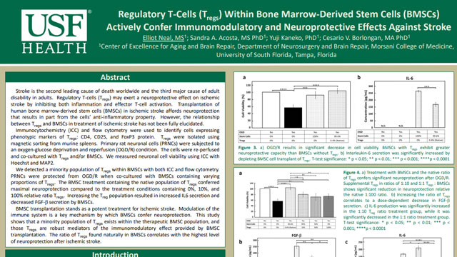 Regulatory T-Cells (Tregs) Within Bone Marrow-Derived Stem Cells (BMSCs) Actively Confer Immunomodulatory and Neuroprotective Effects Against Stroke