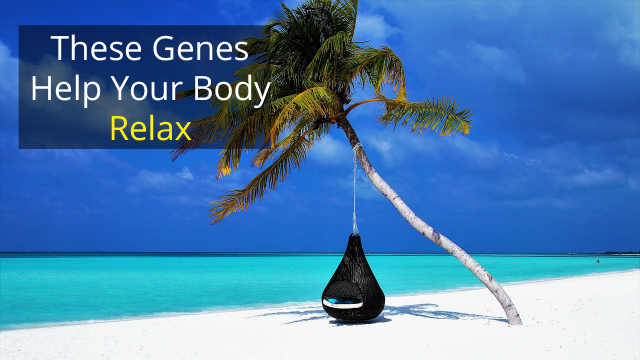 "These ""Relaxation Genes"" May Help Lower High Blood Pressure"