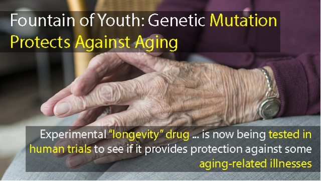 Researchers Discover Mutation That Appears to Protect Against Multiple Aspects of Biological Aging