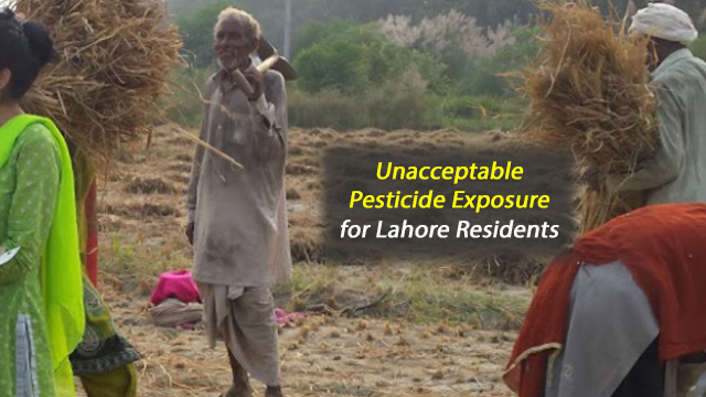 Residents of Major Pakistan City Exposed to Harmful Pesticides