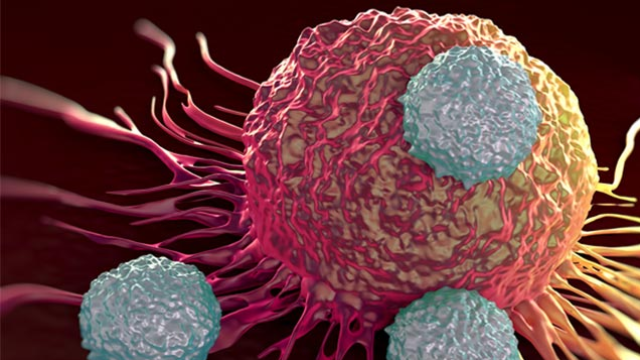 Rewriting Our Understanding of Gastric Tumors