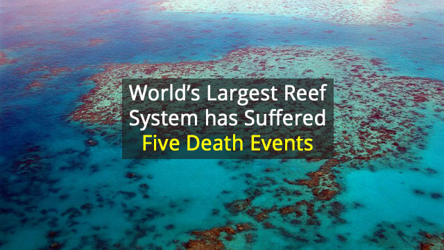 Rise and Fall of the Great Barrier Reef Over 30,000 Years
