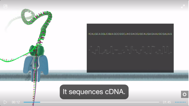 RNA sequencing with nanopore technology