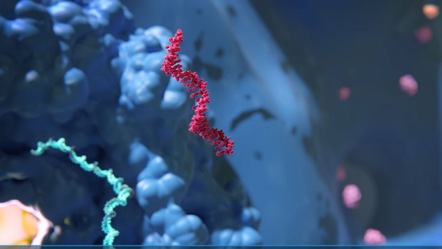 RNAi, a Promising Potential New Class of Medicines