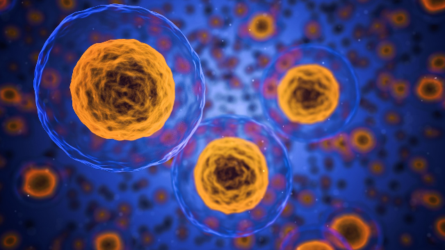 Sartorius Stedim Biotech Partners with Nova Biomedical