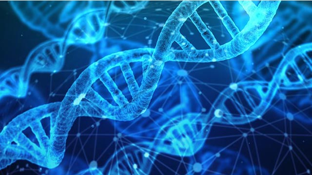 Scientists Call for Unified Standards in 3D Genome & Epigenetic Data