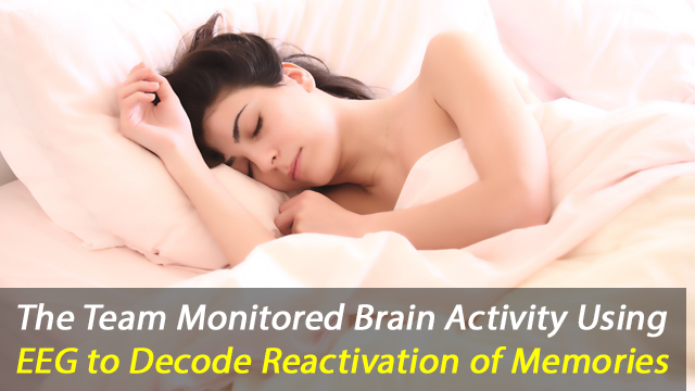 Scientists Decode Memories From Sleep Brain Waves